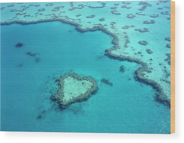 Seascape Wood Print featuring the photograph Aerial Of Heart-shaped Reef At Hardy by Holger Leue