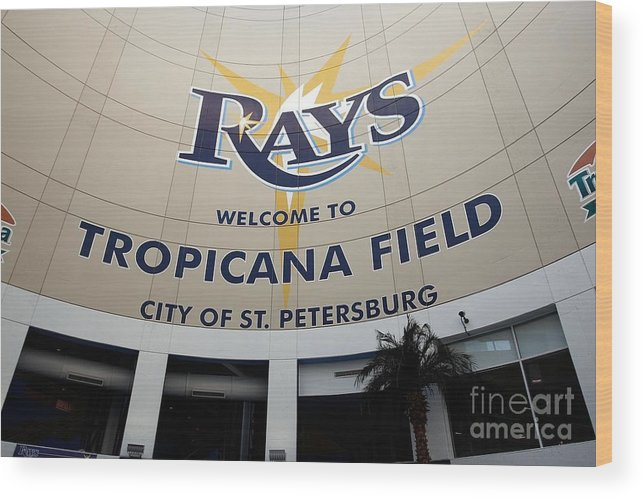American League Baseball Wood Print featuring the photograph Seattle Mariners V Tampa Bay Rays by J. Meric