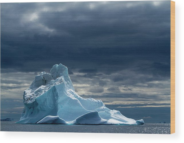 Tranquility Wood Print featuring the photograph Icebergs, Disko Bay, Greenland by Paul Souders