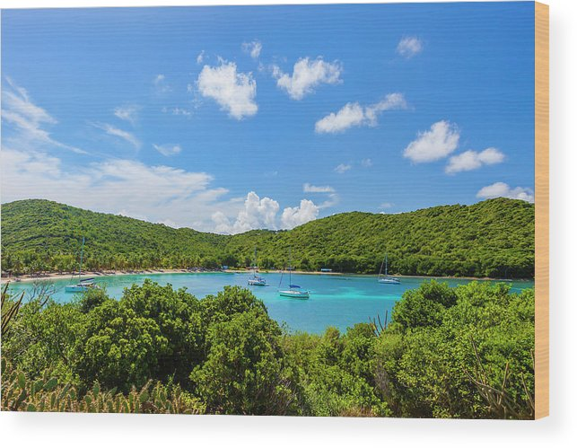 Sailboat Wood Print featuring the photograph Salt Whistle Bay, Mayreau by Argalis