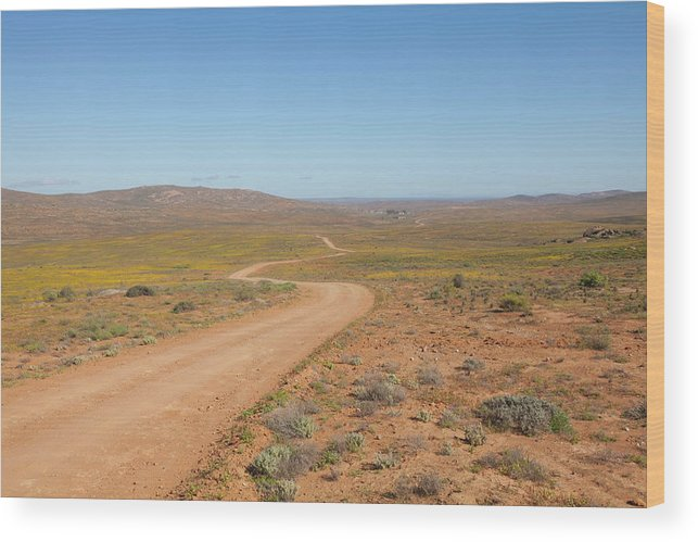 Outdoors Wood Print featuring the photograph A Dirt Road Winds Through The Barren by Anthony Grote