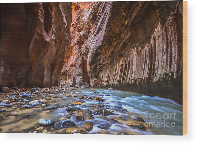 Southwest Wood Print featuring the photograph Amazing Landscape Of Canyon In Zion by Pung