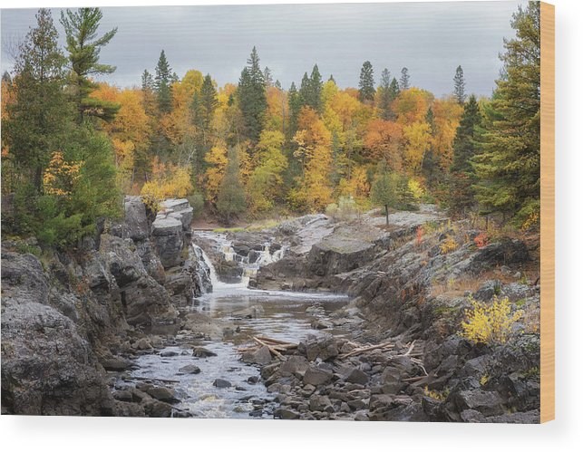 Autumn Wood Print featuring the photograph Autumn at Jay Cooke State Park by Susan Rissi Tregoning