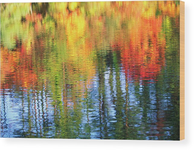 Outdoors Wood Print featuring the photograph Autumn Color Reflection by Ooyoo