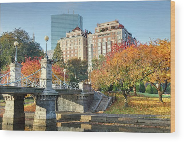Downtown District Wood Print featuring the photograph Autumn In Boston by Denistangneyjr