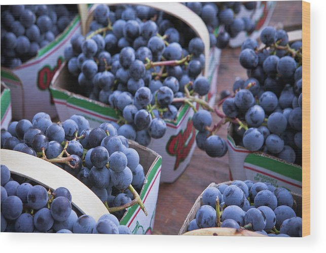 Toronto Wood Print featuring the photograph Baskets Of Grapes by Mary Smyth