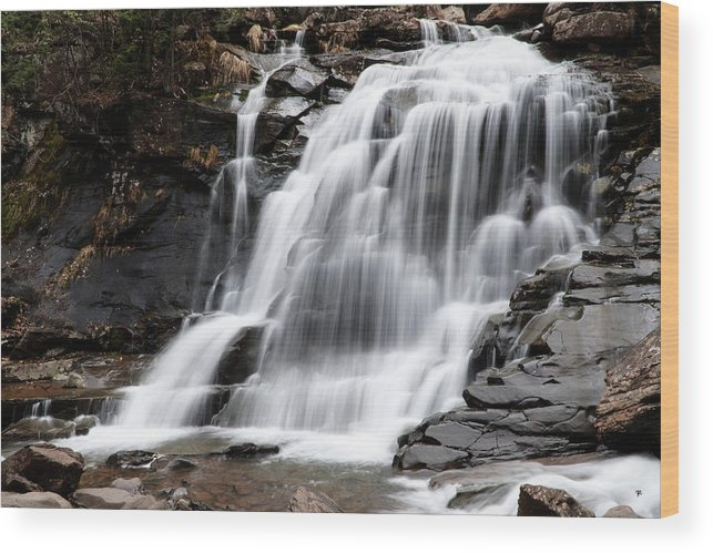 Waterfall Wood Print featuring the photograph Bastion Falls by Tom Romeo