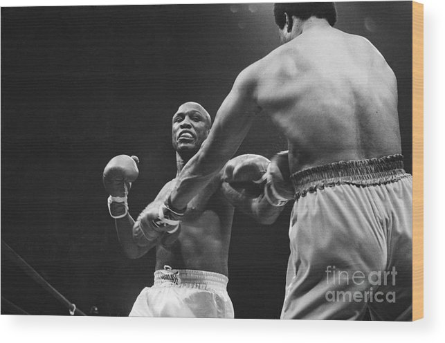 Joe Frazier Wood Print featuring the photograph Boxers Joe Frazier And George Foreman by Bettmann