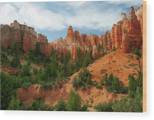 Scenics Wood Print featuring the photograph Bryce Canyon by Wsfurlan