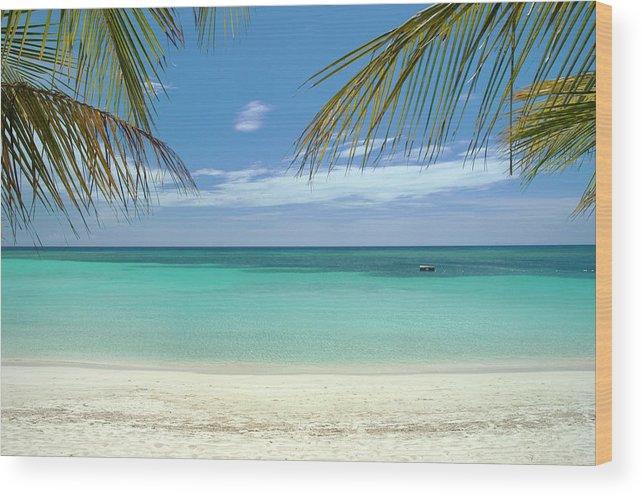 Cool Attitude Wood Print featuring the photograph Caribbean Sea And White Sand Beach by Digi guru