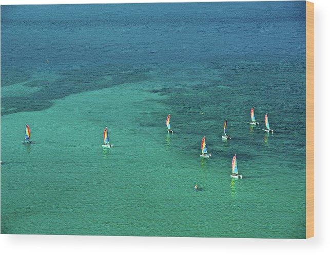 Scenics Wood Print featuring the photograph Catamarans, Catseye Bay, Hamilton by Robin Smith