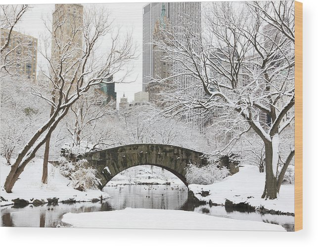 Snow Wood Print featuring the photograph Central Park, New York by Veni