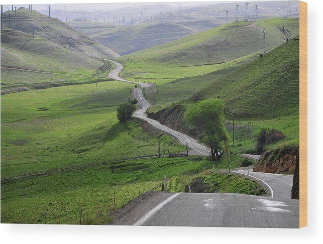 Scenics Wood Print featuring the photograph Country Road Through Green Hills by Mitch Diamond