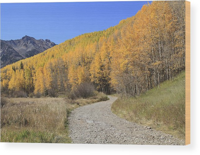 Scenics Wood Print featuring the photograph Dirt Road In The Elk Mountains, Colorado by John Kieffer