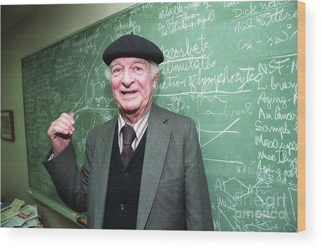 Working Wood Print featuring the photograph Dr. Linus Pauling At The Chalk Board by Bettmann