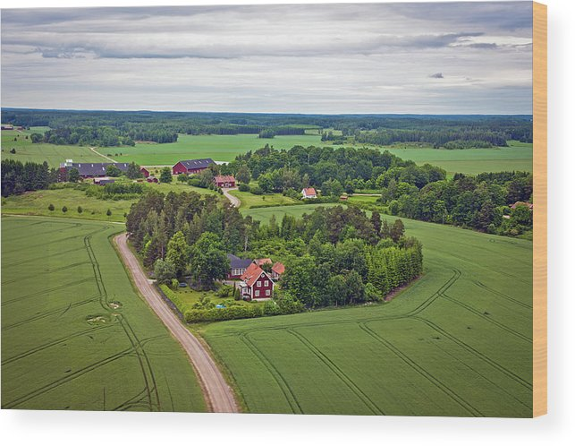 Scenics Wood Print featuring the photograph Farms And Fields In Sweden North Europe by Pavliha