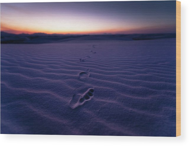 New Mexico Wood Print featuring the photograph Footprint On Dunes by Son Gallery - Wilson Lee