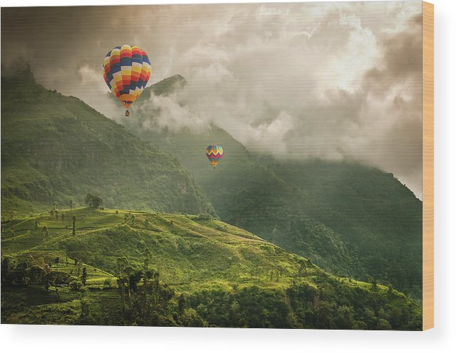 Tranquility Wood Print featuring the photograph Hot Air Balloons Over Tea Plantations by Nicolo Sertorio