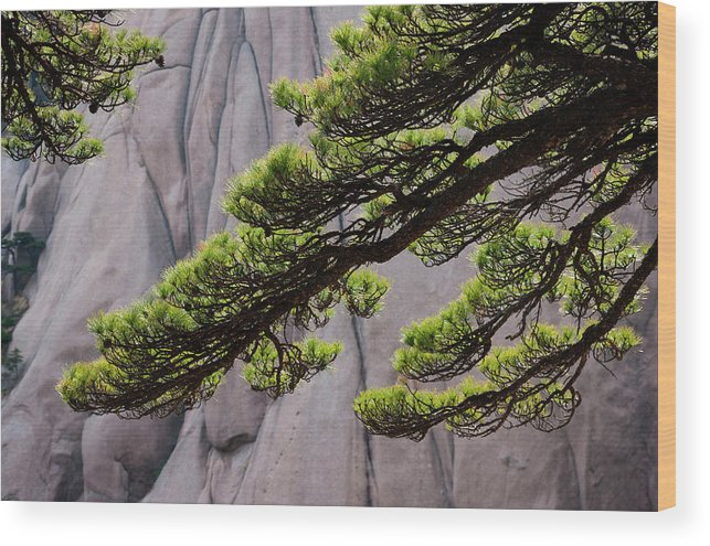 Chinese Culture Wood Print featuring the photograph Huang Shan Landscape, China by Mint Images/ Art Wolfe