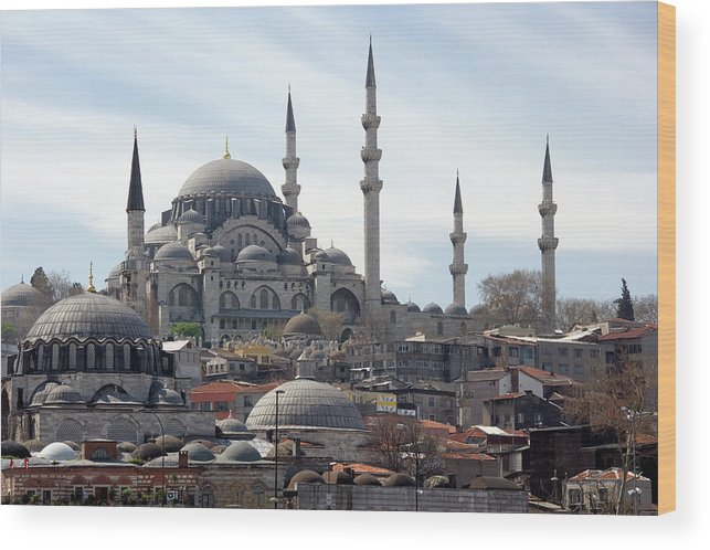 Istanbul Wood Print featuring the photograph Istanbul In Turkey by Steve Allen