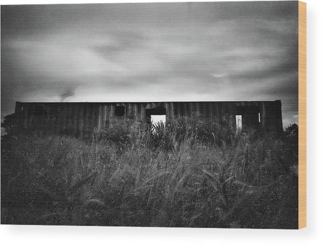 Trinidad Wood Print featuring the photograph Land Of Decay by Trinidad Dreamscape