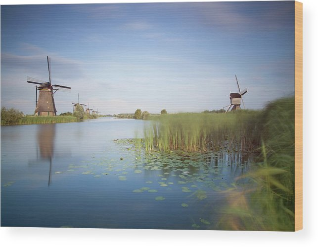 Tranquility Wood Print featuring the photograph Landscape With Windmills, Kinderdijk by Frank De Luyck