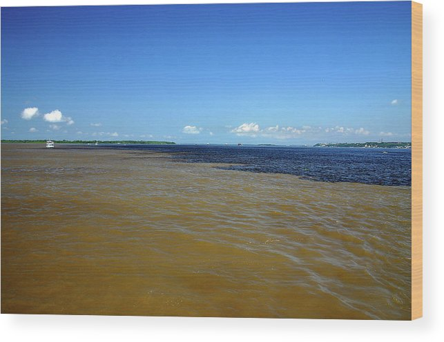 Scenics Wood Print featuring the photograph Meeting Of Waters by Eduardo Bassotto
