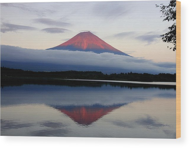 Scenics Wood Print featuring the photograph Mount Fuji by Japan From My Eyes