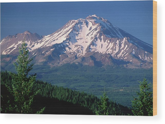 Toughness Wood Print featuring the photograph Mt Shasta Across Lake Siskiyou, Mt by John Elk Iii