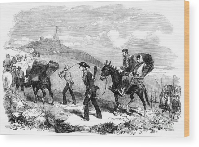 Ambulance Wood Print featuring the drawing New Ambulance Transport Service, 1855 by Print Collector