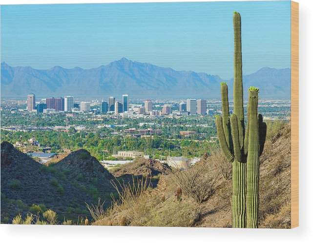 Saguaro Cactus Wood Print featuring the photograph Phoenix Skyline Framed By Saguaro by Dszc