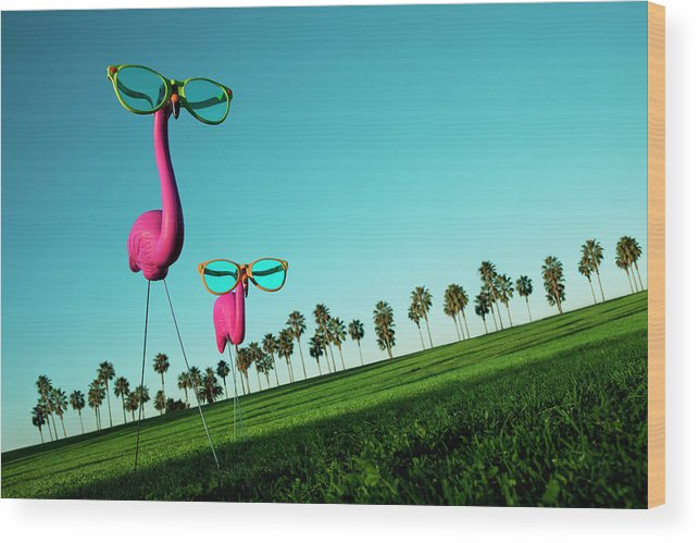 Artificial Wood Print featuring the photograph Plastic Pink Flamingos On A Green Lawn by Skodonnell