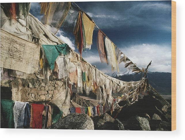 Himalayas Wood Print featuring the photograph Prayer Flags Above Leh, Ladakh, Leh by Richard I'anson