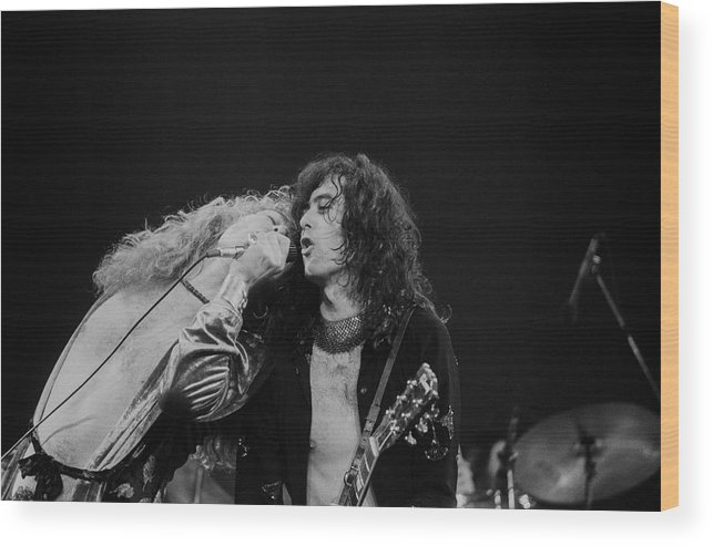 Led Zeppelin Wood Print featuring the photograph Robert Plant And Jimmy Page by Art Zelin