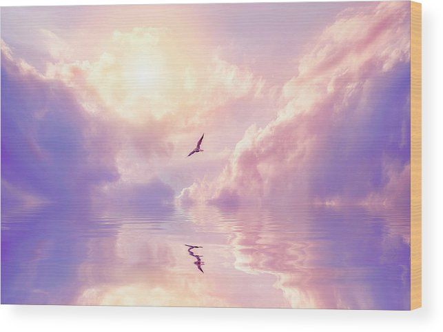 Fairy Tale Wood Print featuring the photograph Seagull And Violet Clouds by Jane Khomi