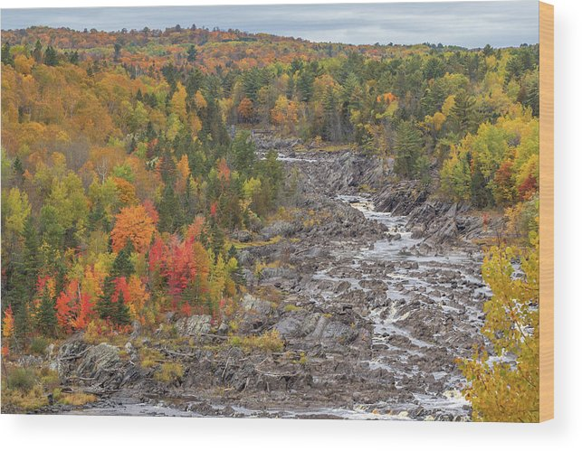 Autumn Wood Print featuring the photograph St Louis River Valley by Susan Rissi Tregoning