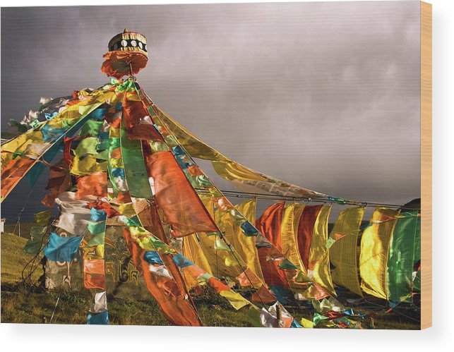 Chinese Culture Wood Print featuring the photograph Stupa, Buddhist Altar In Tibet, Flags by Stefano Tronci