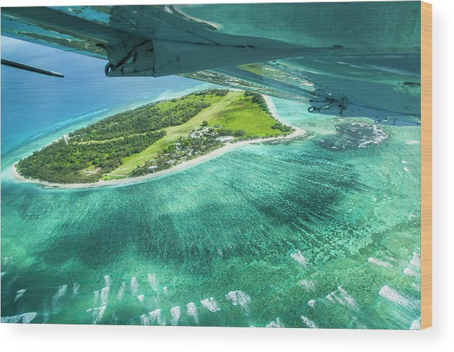 Grass Wood Print featuring the photograph Taking Off From Great Barrier Reef by Nick