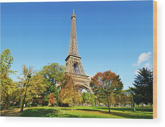 Clear Sky Wood Print featuring the photograph The Eiffel Tower With Some Autumnal by Tom Bonaventure