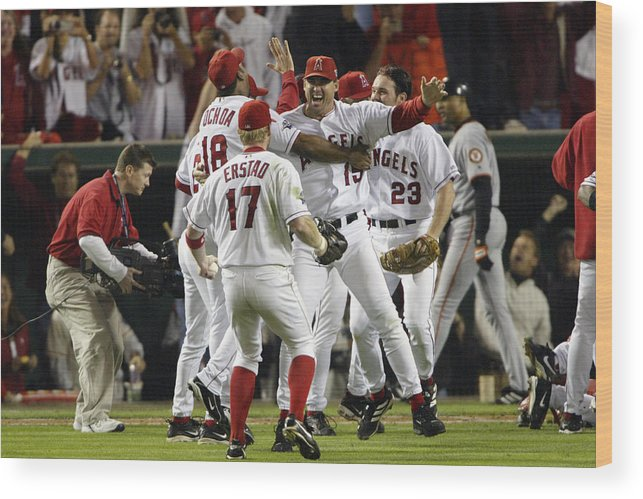 Alex Ochoa Wood Print featuring the photograph Tim Salmon, Darin Erstad And Alex Ochoa by Jeff Gross