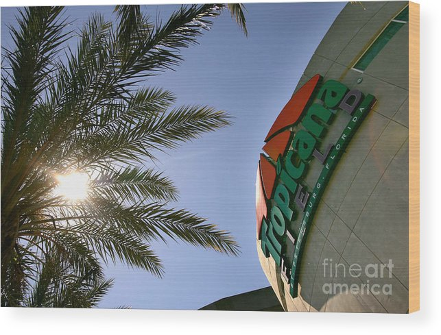 American League Baseball Wood Print featuring the photograph Toronto Blue Jays V Tampa Bay Devil Rays by Nick Laham