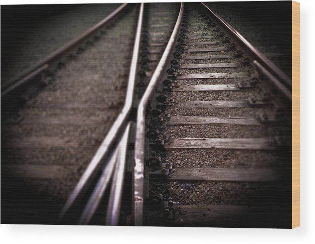 Freight Transportation Wood Print featuring the photograph Train Line Crossing by Mikulas1