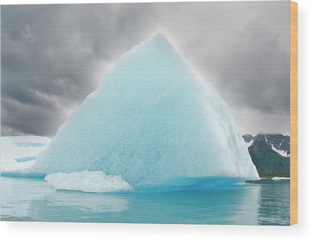 Iceberg Wood Print featuring the photograph Triangular Iceberg On Gloomy Day, Bear by James + Courtney Forte