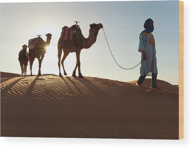 People Wood Print featuring the photograph Tuareg Man & Camels, Erg Chebbi, Sahara by Peter Adams