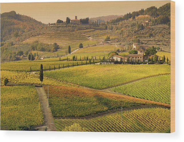 Scenics Wood Print featuring the photograph Tuscany Farmhouse And Vineyard In Fall by Lisa-blue