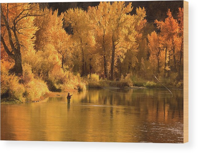 Orange Color Wood Print featuring the photograph Usa, Idaho, Salmon River, Mature Man by Steve Bly