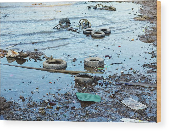 Water's Edge Wood Print featuring the photograph Water Pollution by Drbouz