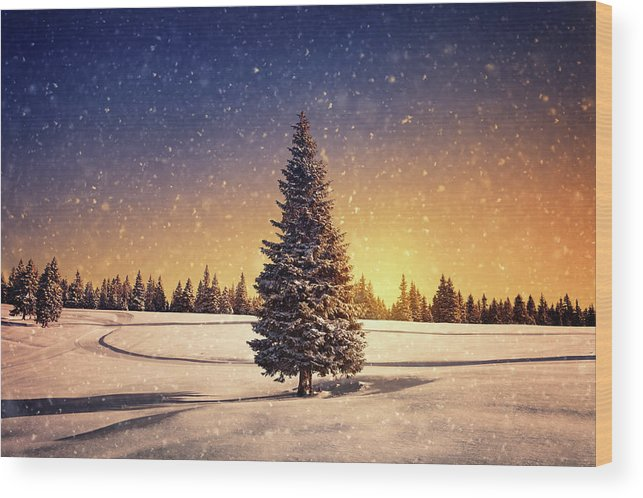 Scenics Wood Print featuring the photograph Winter Sunset by Borchee