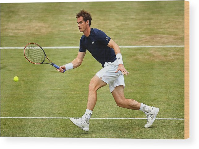 Playoffs Wood Print featuring the photograph Great Britain v France - Davis Cup: Day Three by Jordan Mansfield