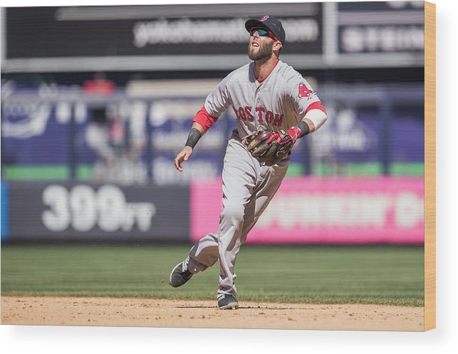 People Wood Print featuring the photograph Dustin Pedroia by Rob Tringali